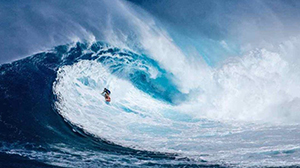 PREPARE TO RIDE THE WAVE – 2017 and beyond.